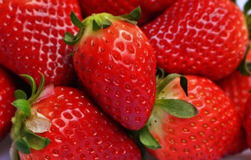 Obratite PAŽNJU na peteljke: Naučite da razlikujete najbolje i NAJSLAĐE jagode od bezukusnih