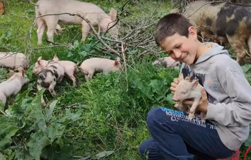 Kopaju kanale kako bi mogli da se OKUPAJU: Braća Danijel i Jovica sa Kosmeta imaju jednu ŽELJU (VIDEO)