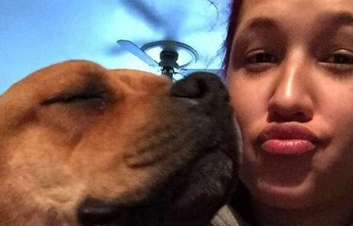 Došla u azil za napuštene životinje da usvoji psa, a onda je doživela najveće iznenađenje života