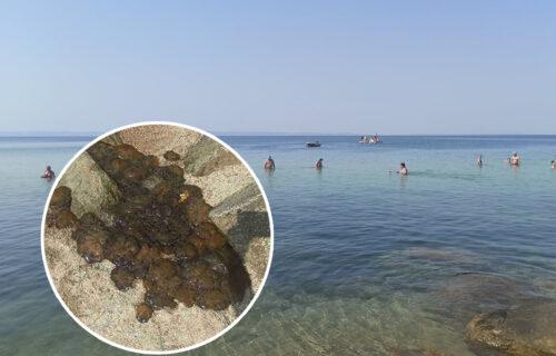 SKANDAL! Žene u Grčkoj rade UŽASNU stvar: U vodi uhvate BEZOPASNE životinje i ubijaju ih na plaži (FOTO)