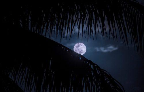 Pun Mesec u Vodoliji 24. jula donosi autentičnost svima, a najviše VAZDUŠNIM ZNAKOVIMA