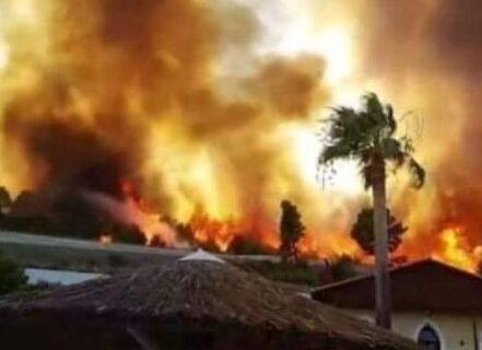 """Požari su povezani sa globalnim zagrevanjem: Koji scenario je """"NAJCRNJI"""", a koji NAJBLAŽI u budućnosti"""