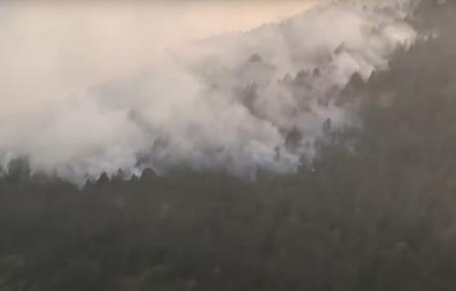Desetine hektara šume na Zlatiboru u PLAMENU: Požar gasi 100 vatrogasaca, pristižu i HELIKOPTERI (VIDEO)
