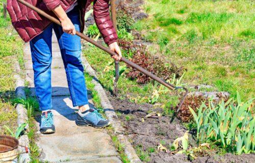 Vaše dvorište će biti SAVRŠENO sređeno: Jednostavan način za uklanjanje KOROVA u bašti