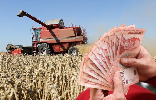 Potrebno je malo ULAGANJA, a zarada ide i na više od 5.000 EVRA: Ovo su top biznisi u poljoprivredi