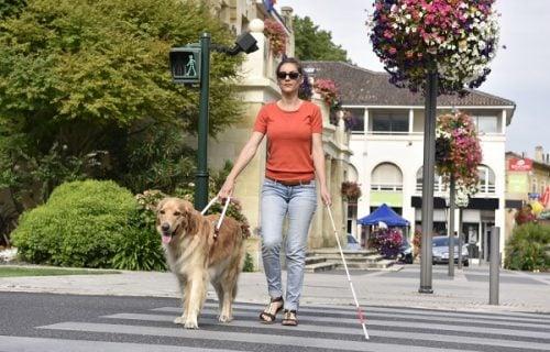 30 godina se PRETVARALA da je slepa: Kad su čuli zašto je to radila, svi su joj okrenuli leđa