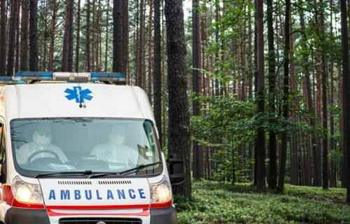 Tragedija: PREMINUO planinar na Fruškoj Gori, Gorska služba prenela telo do hitne pomoći