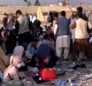 Sramno PONAŠANJE vojske SAD u Avganistanu: Izbeglice tretiraju kao ŽIVOTINJE, evo čim ih hrane (VIDEO)