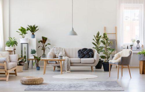 FENG ŠUI pravila: Bela boja u kući donosi blagostanje i mir, ali samo ako je upotrebite na OVAJ način