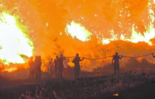 Ponovo GORI u Grčkoj: Rasplamsali se požari, Atika u dimu i plamenu - EVAKUISANA obližnja sela (FOTO)