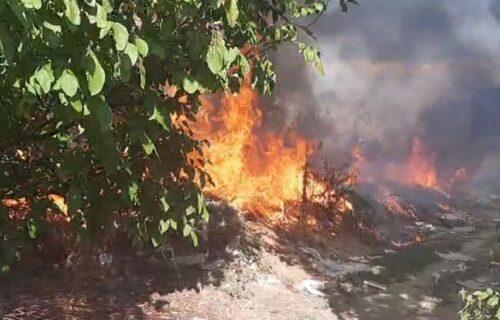 Panika kod Leskovca: GORI divlja deponija, meštani u STRAHU da im vatra ne zahvati kuće (VIDEO)