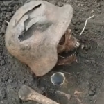 Rusi OTKOPALI telo nemačkog vojnika: Ono što su našli kod njegovih KOSTIJU izaziva strašnu jezu (VIDEO)