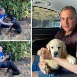 Stefanović promenio PSA zbog REJTINGA: Izbacio dobermana kako bi uzeo malog labradora (FOTO)
