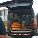 Dok su mu sahranjivali vlasnicu, pas je uradio nešto što će vas dirnuti u srce (VIDEO)