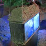 Zbog klikova i lajkova ŽIV ZAKOPAN, pod zemljom proveo šest sati (VIDEO)