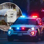 Taru je muž ZVERSKI ubio: Komšije kažu da je imao ĐAVOLJE oči – policajci otvorili kontejner i sledili se