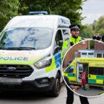 UŽAS u Velikoj Britaniji: Muškarac IZBO poslanika koji je držao govor, uhapšen nakon incidenta (FOTO)