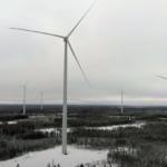 Uzgajivači irvasa pobedili vetroelektrane: Moraće da uklone 151 turbinu?