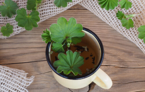 čaj od virka