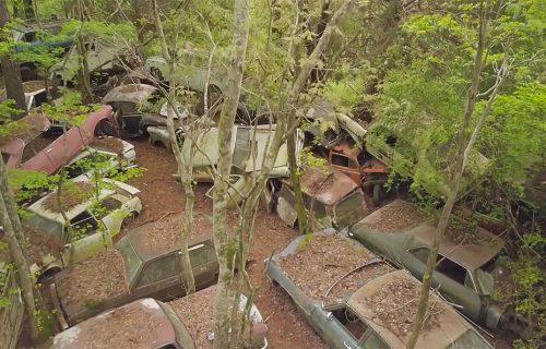Na ogromnom groblju trune 4.000 oldtajmera, a među njima poslednji automobil Elvisa Prislija (VIDEO)