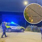 Prve FOTOGRAFIJE napada u Norveškoj: UBIJAO ljude lukom i strelom, oružje završilo na ulici (FOTO)